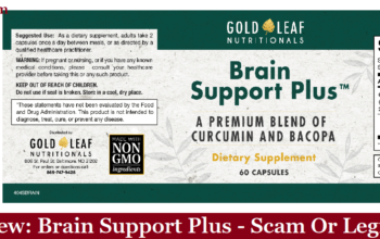 My Review: Brain Support Plus (2020) - Scam Or Legit?